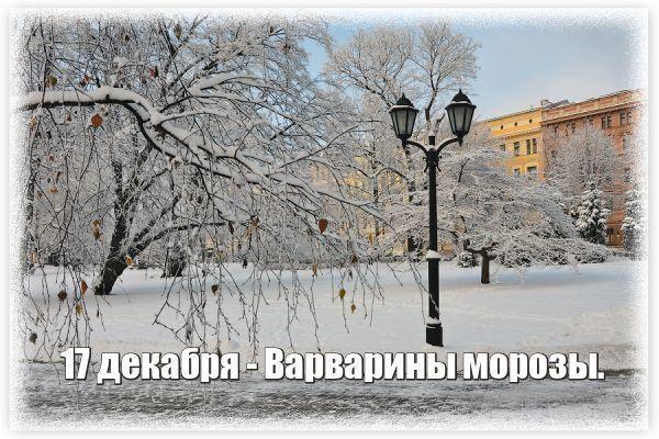 День Варвары, Варварины морозы   Новогодний