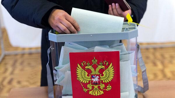 Координатор «Молодого Петербурга» просит главу ЦИК разобраться с питерскими выборами